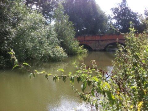 Betchworth, River Mole
